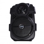 Tragbare 250 Watt Karaoke Sound Anlage Bluetooth Radio MP3 USB Anschluss Musik Party WJG 2863810