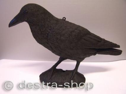 Kunststoffrabe zur Taubenvergrämung