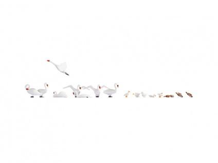 Noch 15774 Schwäne und Enten