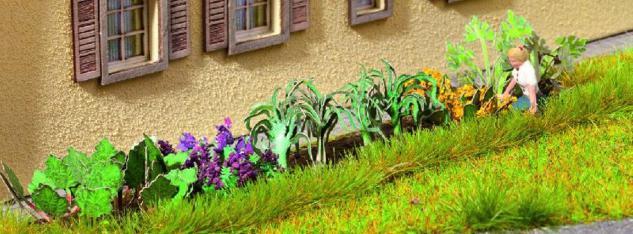 Noch 14054 Schrebergarten Pflanzen