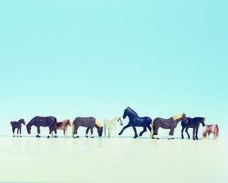 Noch 45761 Pferde