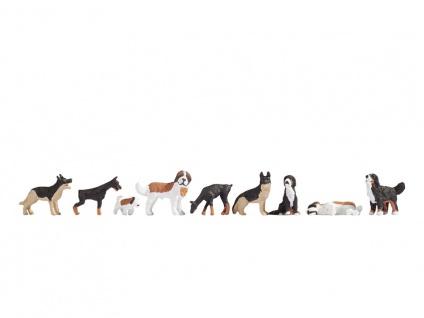 Noch 15717 Hunde