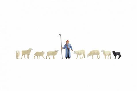Noch 36748 Schafe und Schäfer