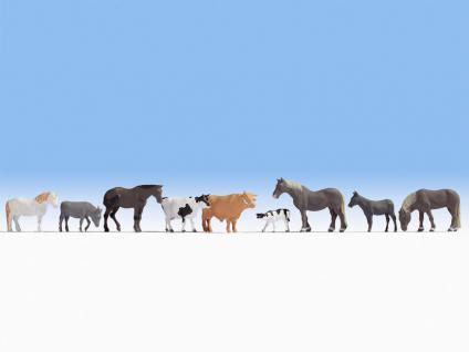 Noch 15713 Tiere auf dem Bauernhof