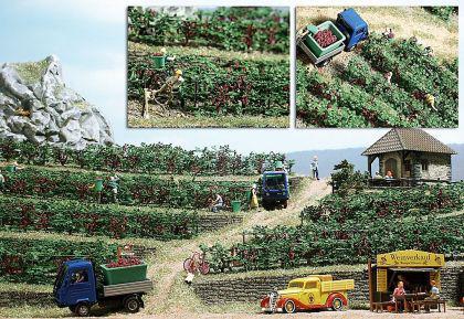 Busch 1200 Weinreben