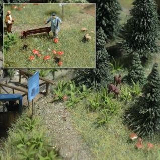 Busch 1203 Farne und Pilze