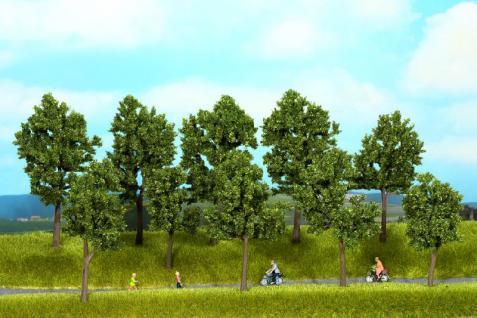 Noch 24215 Bäume Sommer