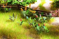 Noch 14056 Feld- und Wiesenpflanzen-Set