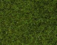 Noch 07102 Wildgras hellgrün