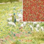 Busch 7357 Blütenflocken Sommerblumen