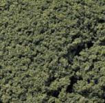 Woodland FC58 Foliage Clusters mittelgrün