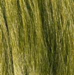 Woodland Scenics FG173 Feldgras hellgrün