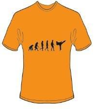 T-Shirt Evolution Karate Farbe orange