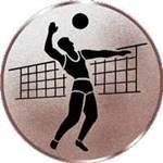 Emblem Volleyball-Herren, 50mm Durchmesser