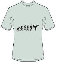 T-Shirt Evolution Karate Farbe ash