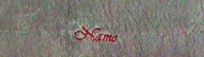 Saunatuch Supreme 100x200 cm graphit 600 g/m2 mit Namensbestickung rot 1912