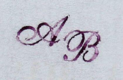 Badetuch 100x150 cm New York weiß mit Intitialienbestickung lilamulticolor S2124