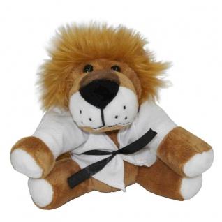 Kampfsport Löwe Ole