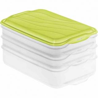 "Aufschnittbox "" Foodcenter"" lime grün/transluzent 2 x 0, 75 l/1 x 1, 35 l"