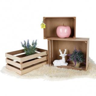 Dekokisten-Set 3-teilig Holzkisten Holzbox Obstkisten Beistelltisch Aufbewahrung