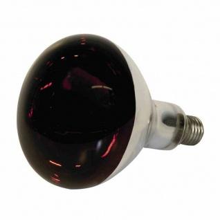 Infrarotlampe 150W rot hartglas Wärmelampe Aufzucht Viehaufzucht Lampe Birne NEU