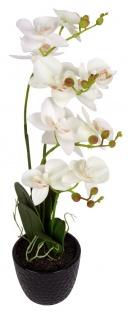 Künstliche Orchidee weiß 3 Rispen Kunstblume Kunstpflanze Zimmerpflanze 48, 5cm