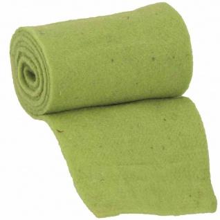 Winterschutzmatte grün 200x20x0, 3cm Schmutzfangmatte Fußabtreter Türmatte TOP