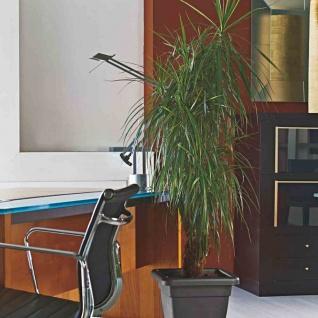 Untersetzer zu Krea quadratisch 30cm anthrazit Pflanztopf Pflanzen Balkon Garten