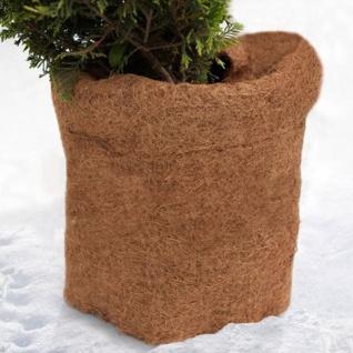 Pflanzen Kokosmatte Winterschutz Pflanzenschutz Frostschutz Kokosfaser 150x50cm
