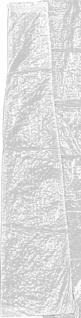 Brema SCHIRMHUELLE Sonnenschirm-Schutzhülle 50700 Transparent