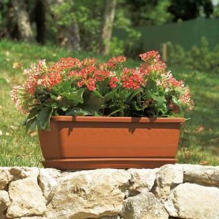 Untersetzer zu INIS terra 50 Pflanztopf Pflanzgefäße Pflanzen Blumen Garten TOP