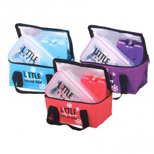 Mini-Kühltasche mit Brotdose und Kühlakku Brottasche Picknicktasche Lunchtasche
