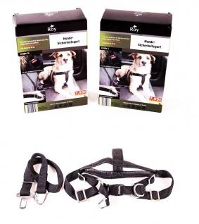 Roy Hundesicherheitsgurt Größe M und L Hundeleine