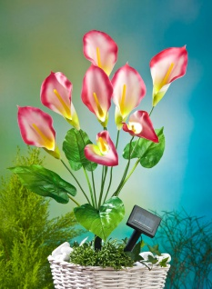 LED Solar-Kunstblume Calla rot 63cm Lilie Kunstpflanze Terrassendeko Balkondeko