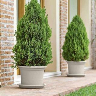 Kübel Geo 30cm sand Pflanzkübel Pflanztöpfe Pflanzgefäße Pflanzen Balkon Garten