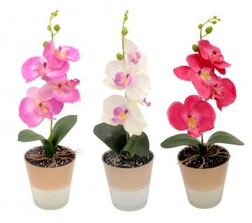 Orchidee mit LED im Topf Beleuchtung künstlich Kunstpflanze Kunstblume