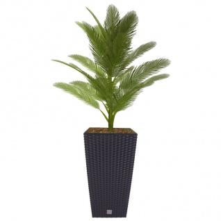 Polyrattan Pflanztopf mit Einsatz anthrazit Blumentopf Pflanztopf Blumenkübel - Vorschau 1