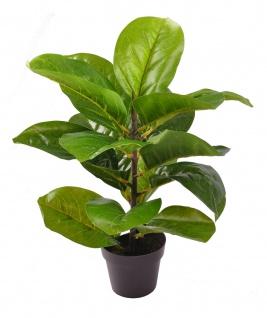 Künstliche Zimmerpflanze im Topf 38cm Kunstpflanze Blume Tischdeko Fensterdeko