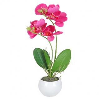 Künstliche Orchidee 36cm im Keramiktopf Kunstpflanze Zimmerpflanze Dekopflanze