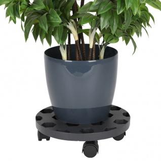 Pflanzenroller 30cm Blumenroller Untersetzer Kübelroller Rollbrett Transport