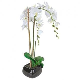 Künstliche Orchidee 68cm im Keramiktopf Kunstpflanze Zimmerpflanze Dekopflanze