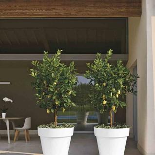 Kübel MITU PAC 25cm anthrazit Pflanzkübel Pflanztopf Pflanzgefäß Pflanzen Garten