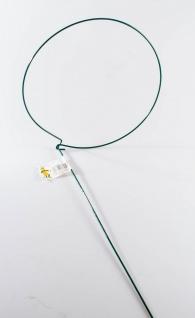Blumenstütze konisch mit 1 Schlinge 35 x 80 cm - Vorschau