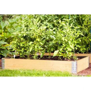 Hochbeet-Rahmen natur Frühbeet Pflanzbeet Gartenbeet Blumenkasten erweiterbar