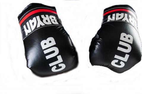 BRYAN Boxhandschuhe Trainingshandschuhe Kickboxhandschuhe Sandsack
