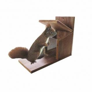 Futterstation Eichhörnchen