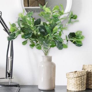 Künstliche Kirschlorbeer-Zweige 45cm Kunstpflanze Kunststrauch Lorbeerblätter