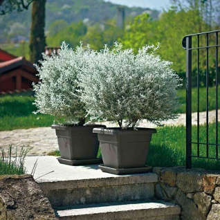 Kübel Krea quadratisch 35cm anthrazit Pflanzen Blumen Garten Terrasse Balkon NEU