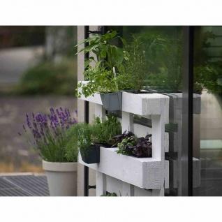 Pflanzgefäß Easy 10cm für Europaletten, betonfarbe