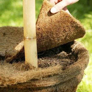 Kokos-Mulchscheibe 45cm Kokosmatte Winterschutz Frostschutz Pflanzenschutz
